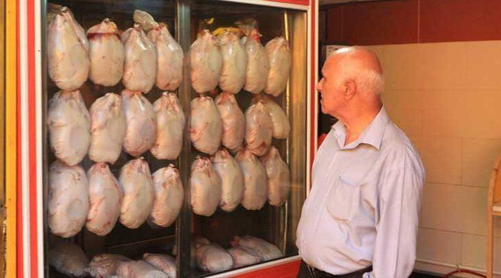 فراوری و مصرف استاندارد مرغ با وزن 1600 گرم در دستورکار نهاده شد