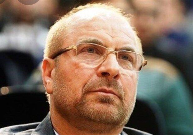 رئیس مجلس درگذشت طوبی کرمانی را تسلیت گفت