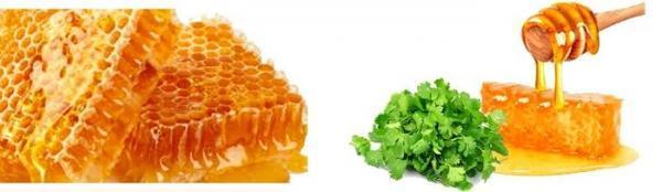 خواص عسل گشنیز چیست؟