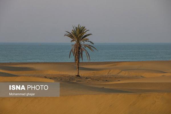 ایران زیباست؛ ساحل درک، تصاویر